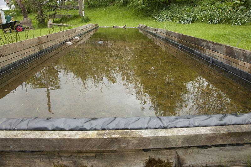 Build Garden Wildlife Pond