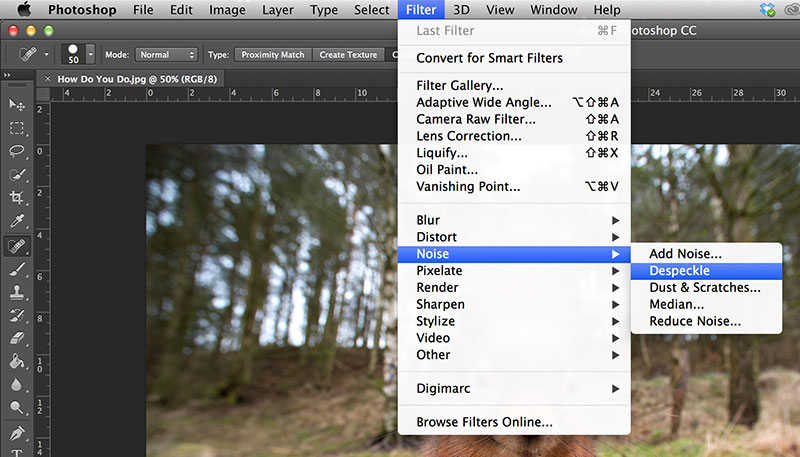 How to Reduce Noise in Photoshop