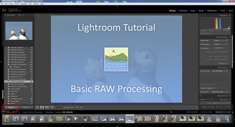 How to Process a RAW in Lightroom
