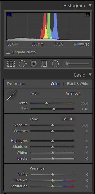 All You Need to Know to Process a Raw File in Lightroom