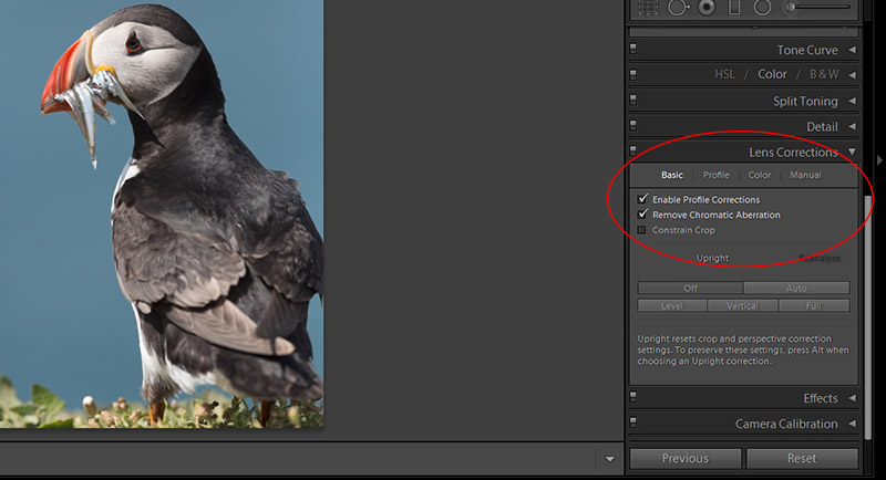 Processing a RAW file in Lightroom