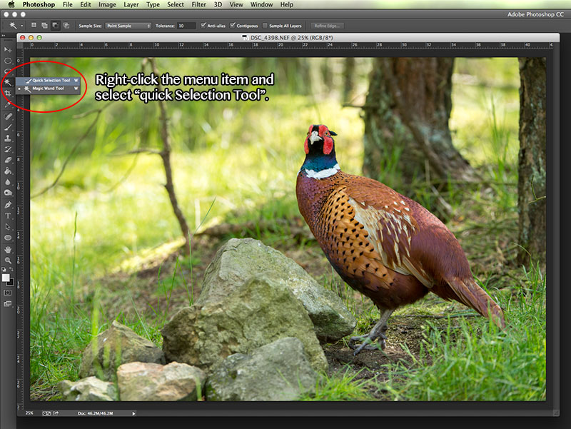 Selective Sharpening in Photoshop
