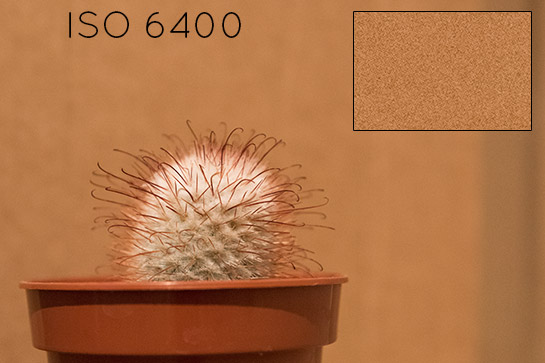 Nikon D810 ISO Capabilities Comparison