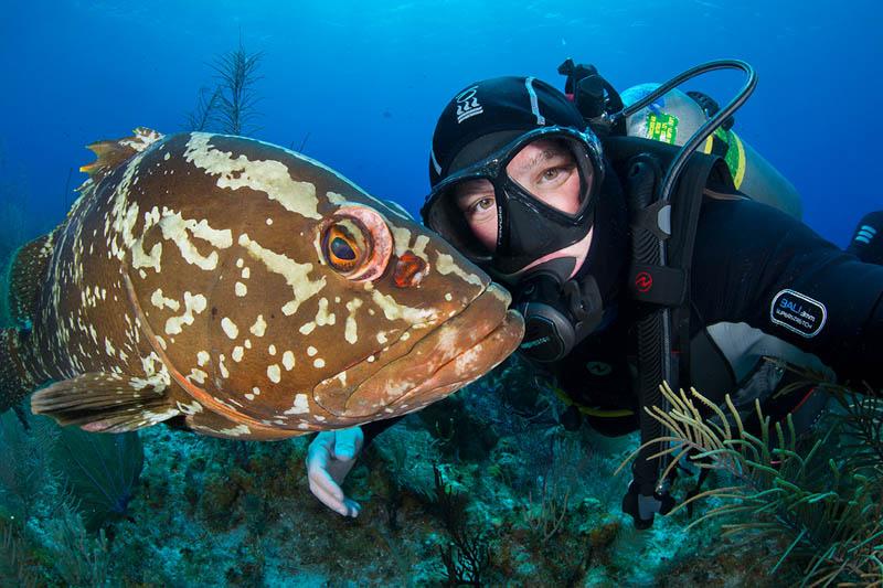 Grouper Selfie. Cayman Islands