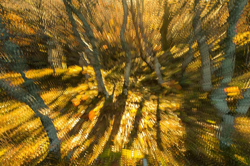 how to take multiple exposure photos