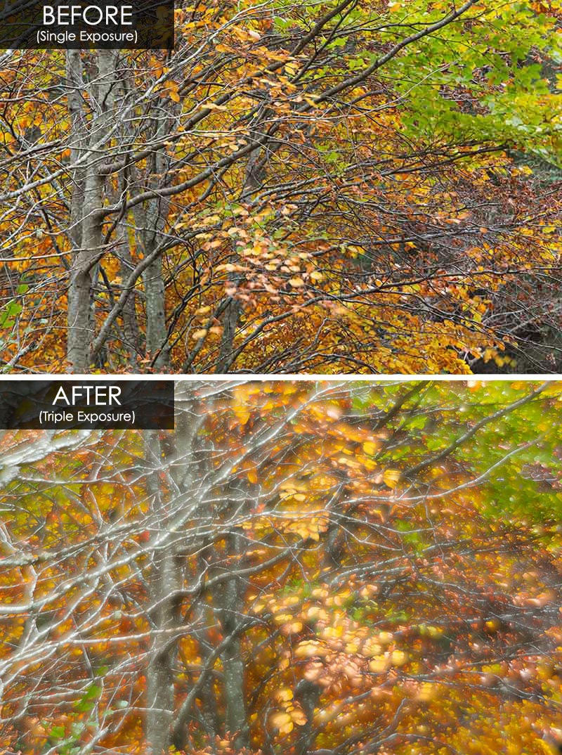 before and after multiple exposures