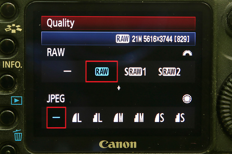 raw or jpeg time-lapse