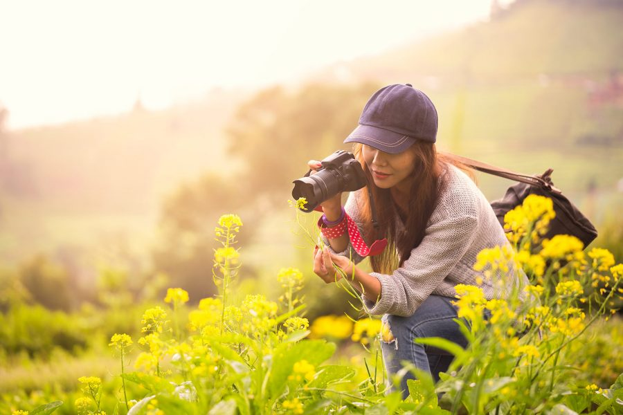 5 Ideas For Wildlife Photography In Summer Nature Ttl