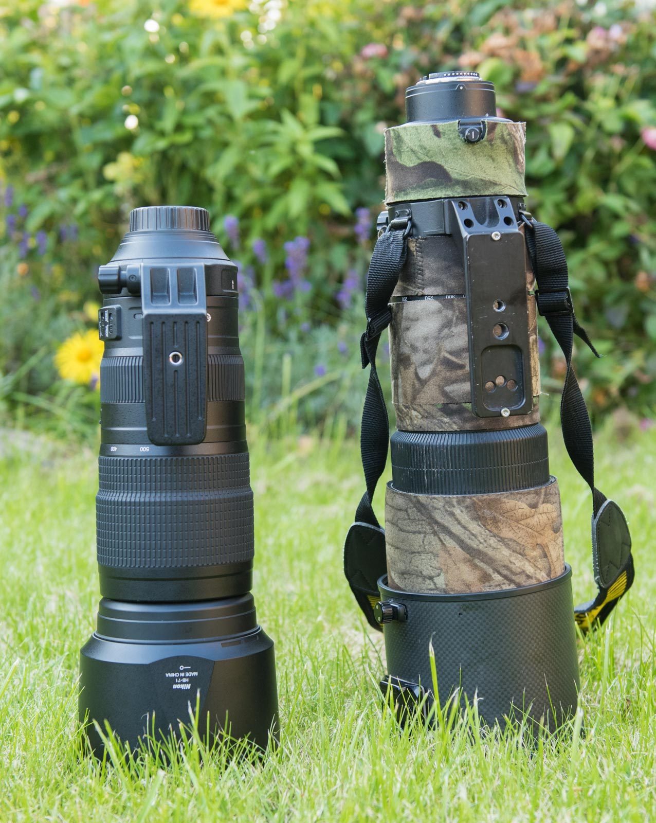 nikon 200-500mm review wildlife