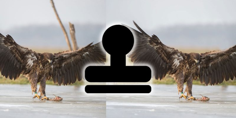 How to Remove Objects from Photos with Photoshop's Clone Tool