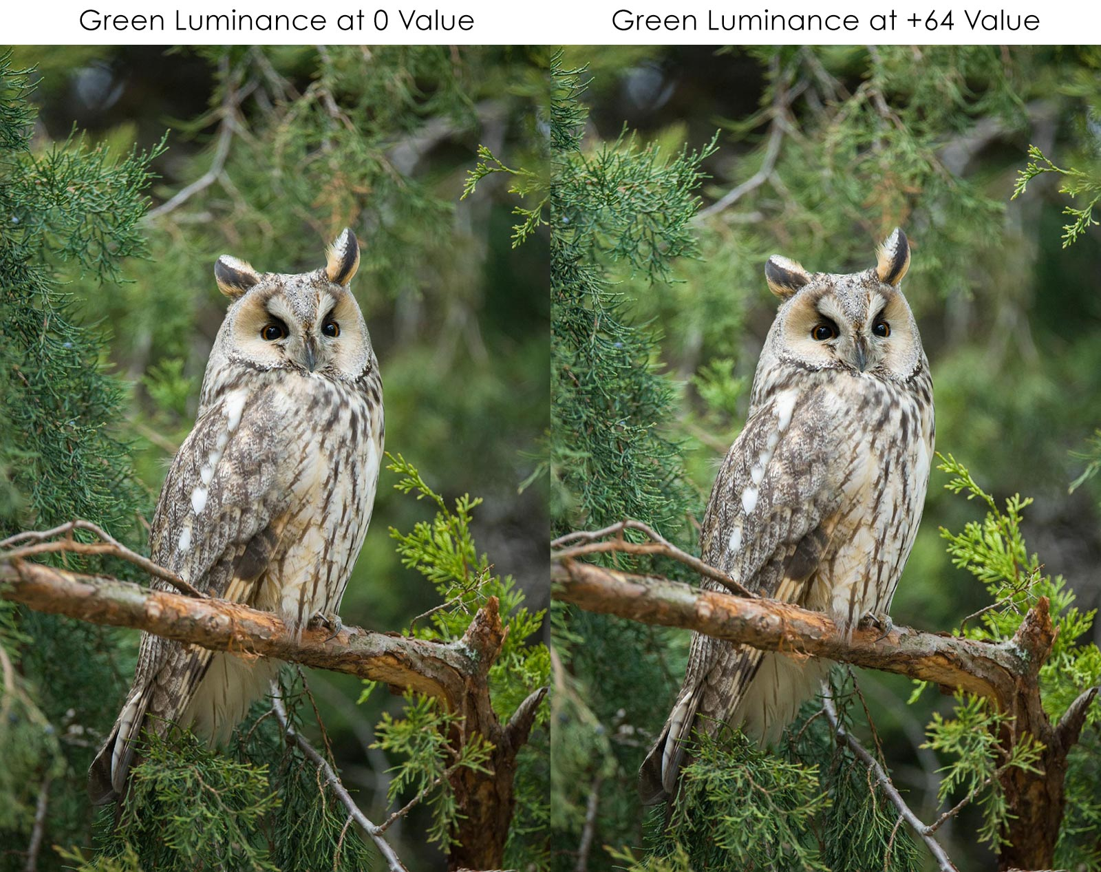 luminance lightroom