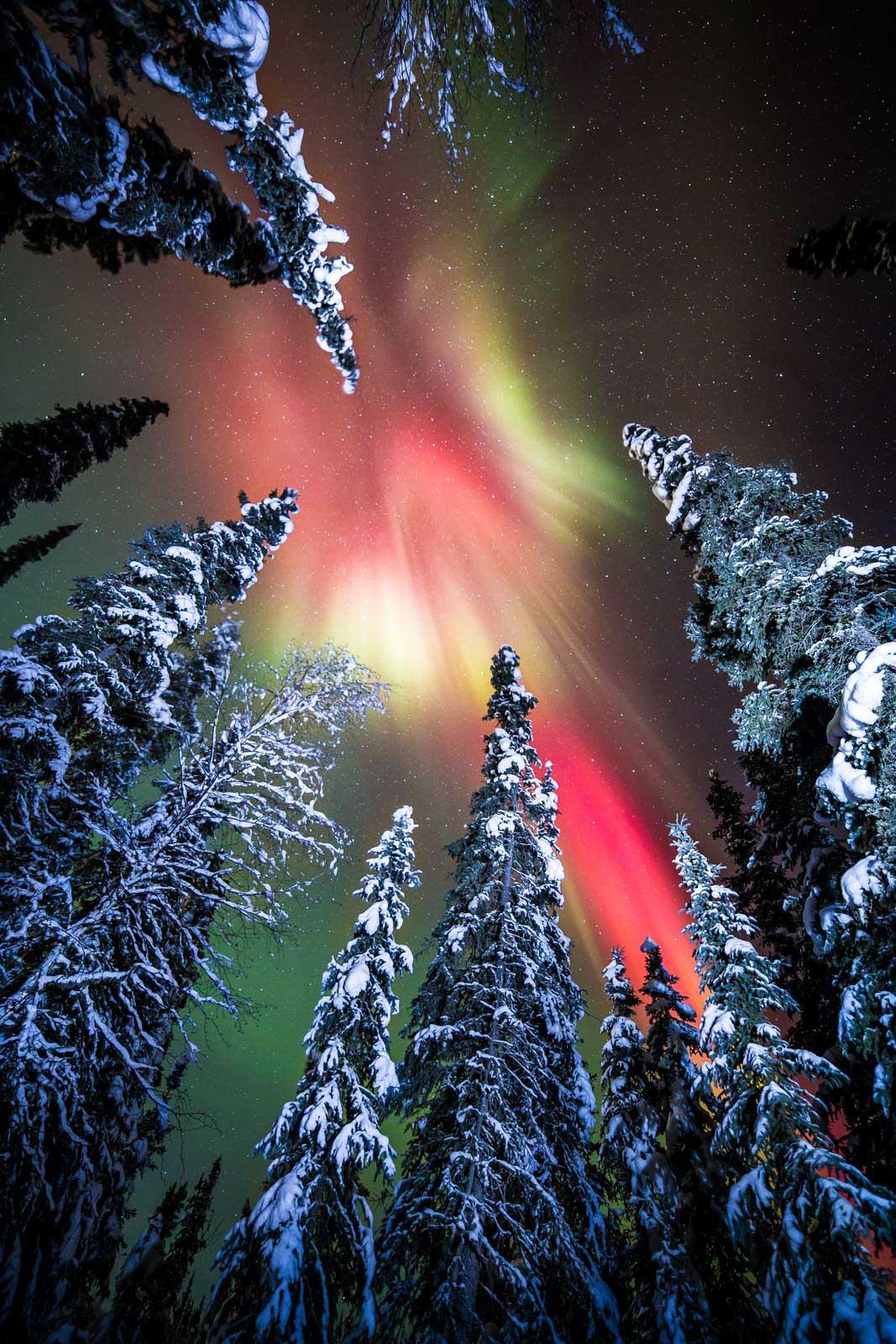 alaska northern lights tips