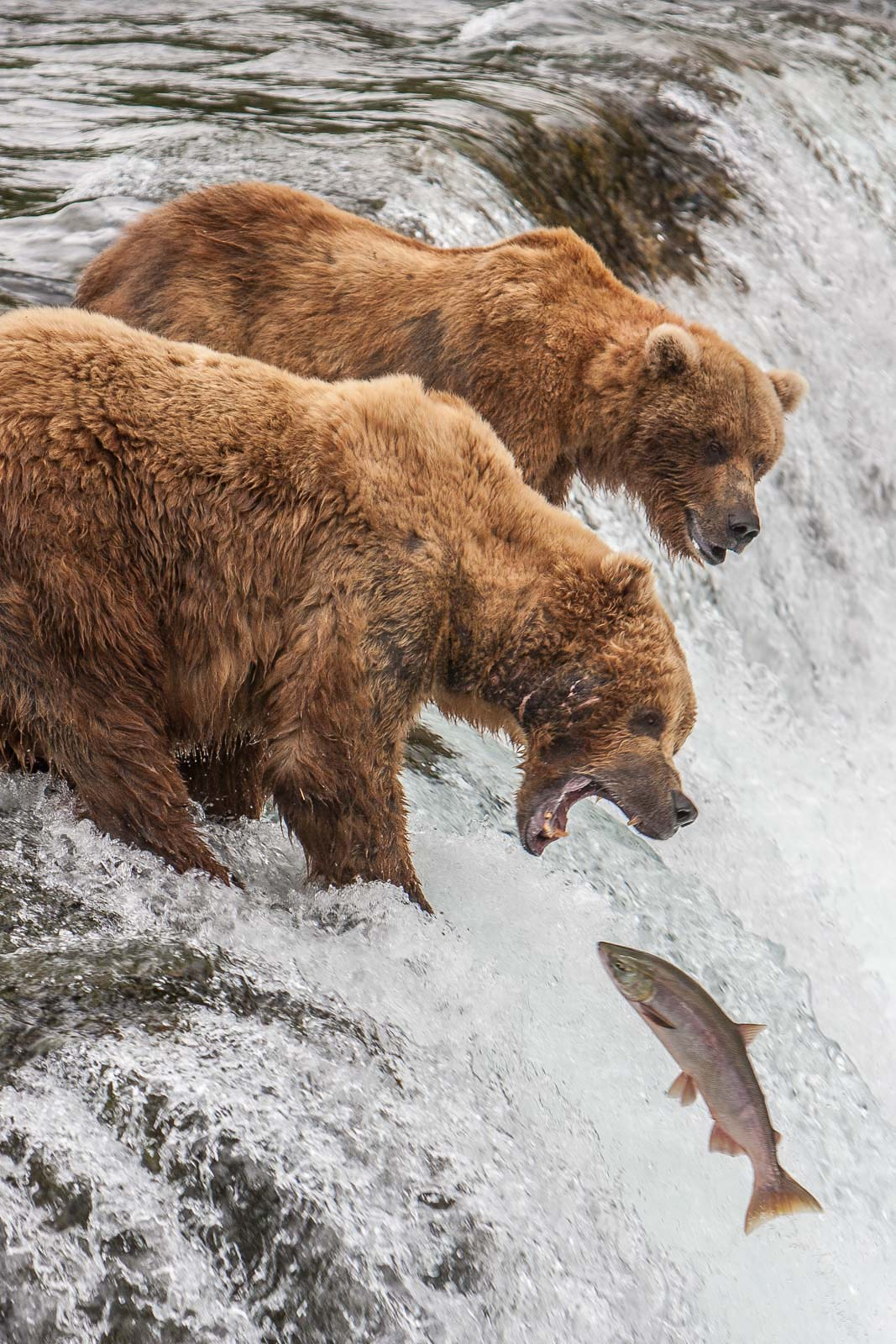 top locations for photography alaska