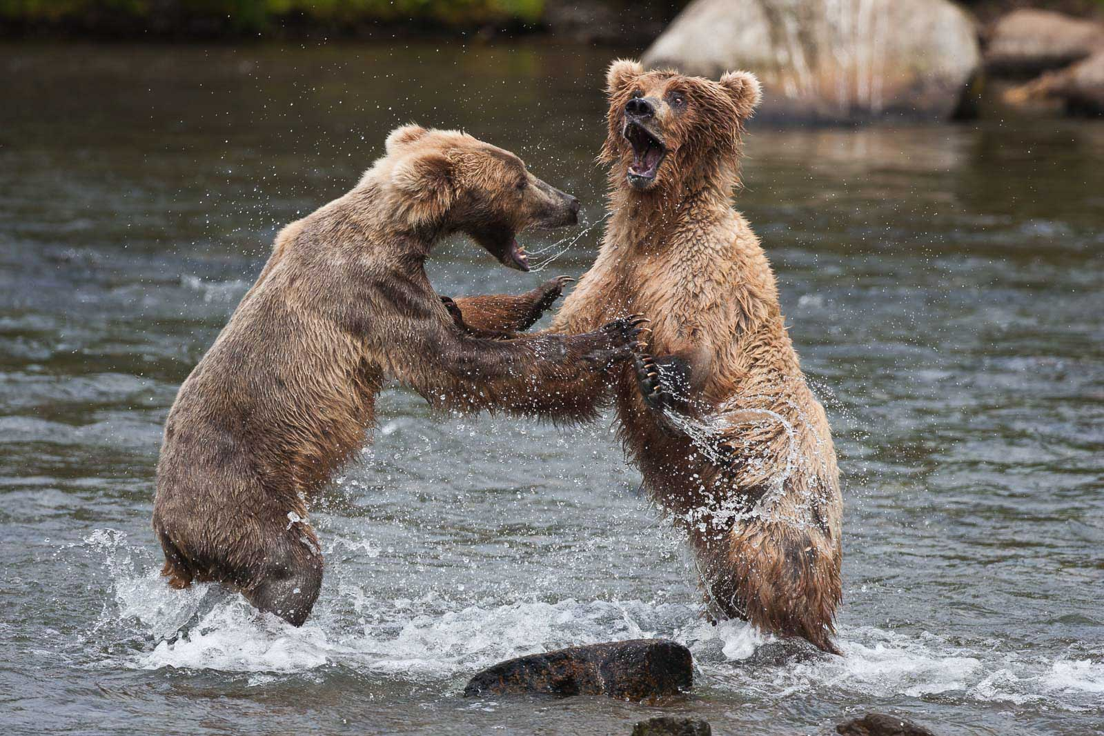 top places for photography alaska