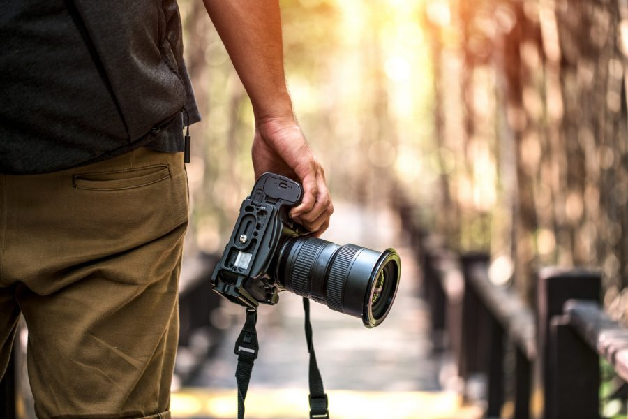 5 Tips to Give your Wildlife Photography Skills a Boost » xofojyge.cf