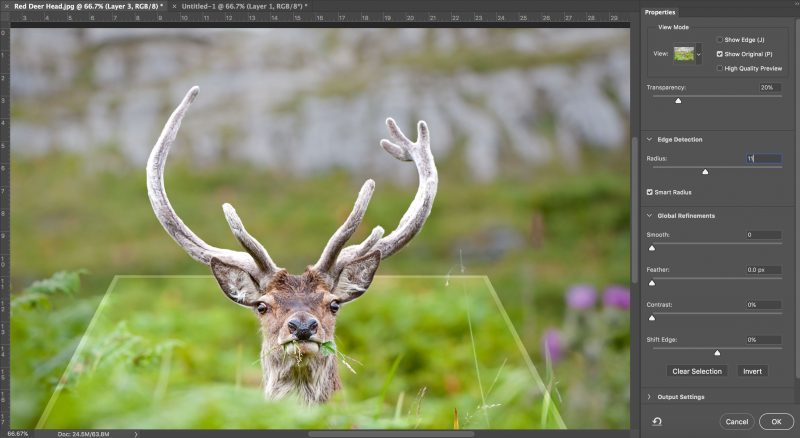 How to Make a Pop-up Nature Photo in Photoshop | Nature TTL