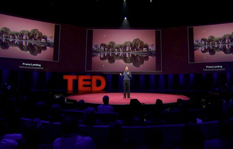 9 TED Talks to Inspire You as a Nature Photographer