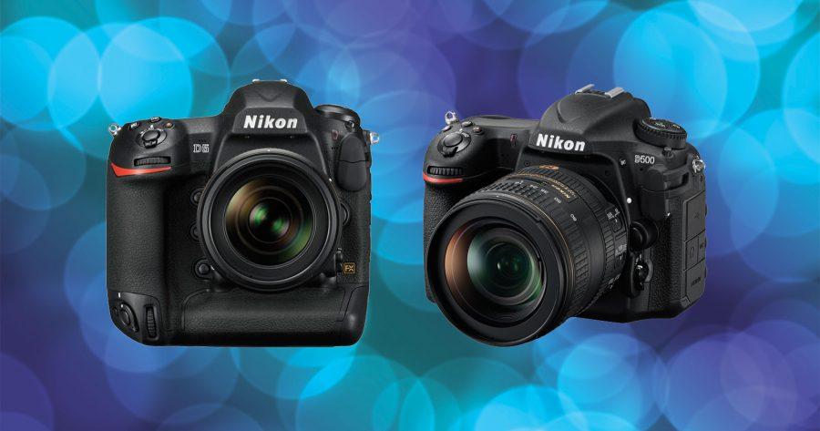 New Firmware Update for Nikon D500 & D5 | Nature TTL