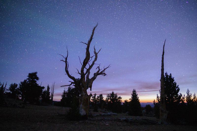 mirrorless camera starscapes