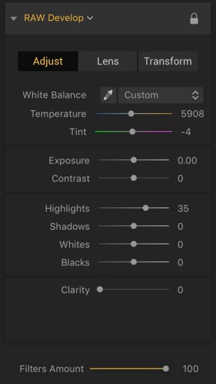 how to edit raw photos in luminar 2018