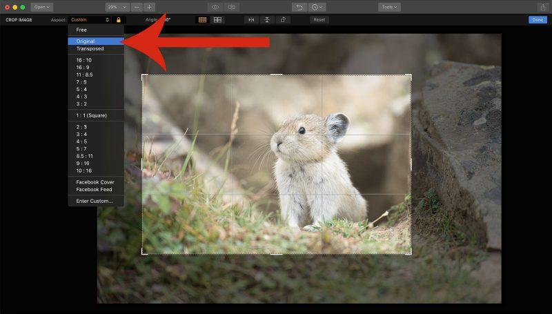 edit raw file luminar 2018