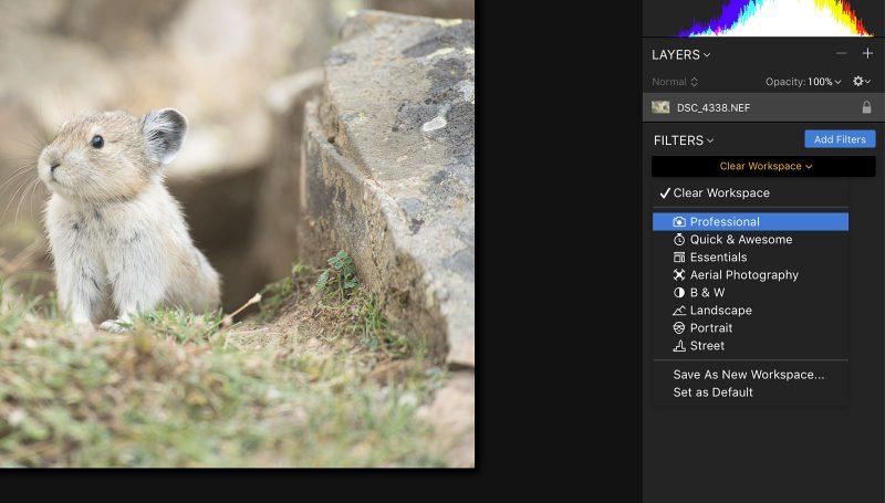 luminar 2018 raw editing photo