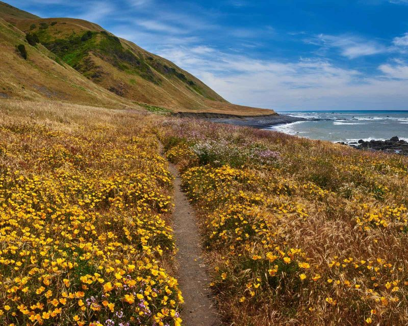 best places photography California