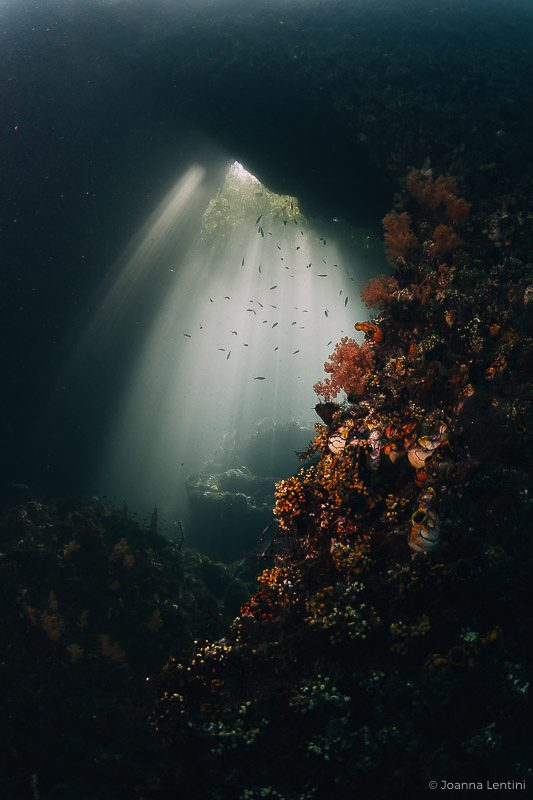 underwater photography locations