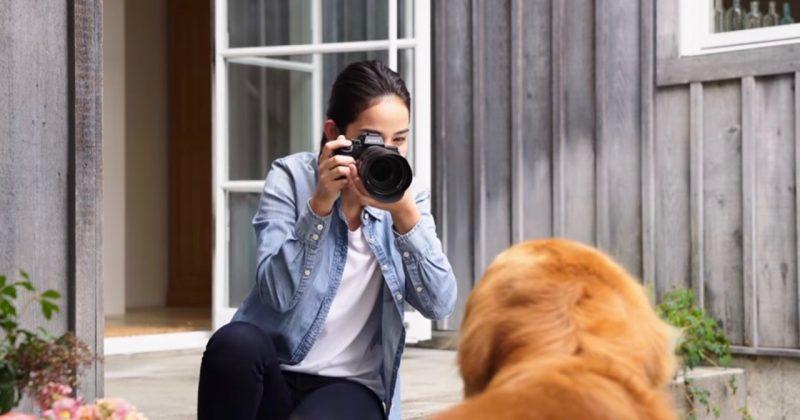 Sony's New Animal Eye AF Makes Tracking Wildlife Easier