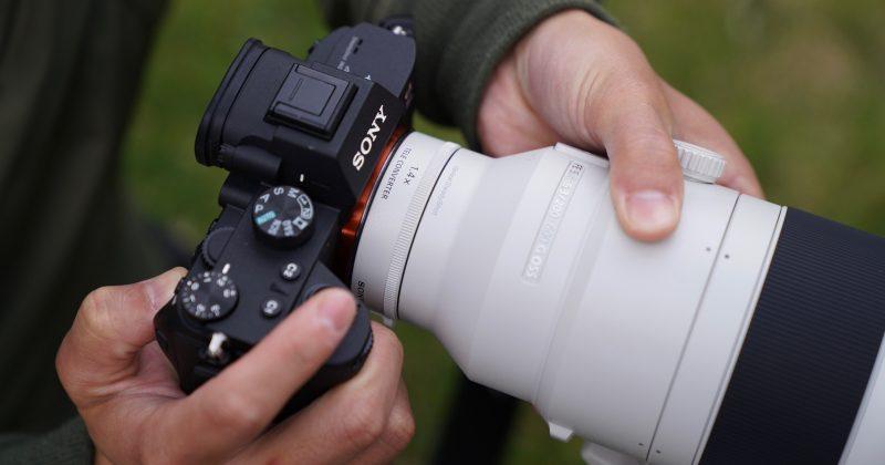 Sony Announces Two New 'Super-Telephoto' Lenses | Nature TTL