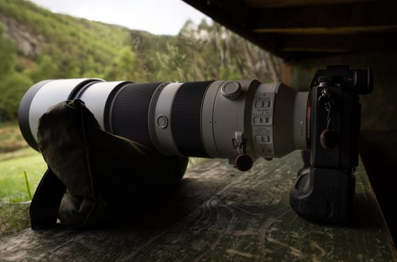 sony-200-600mm-lens-review-9