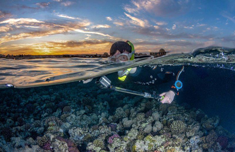 underwater split shots over under