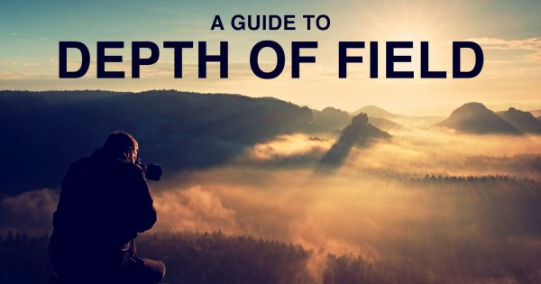Depth of Field for Beginners: Bokeh, Focus, and more