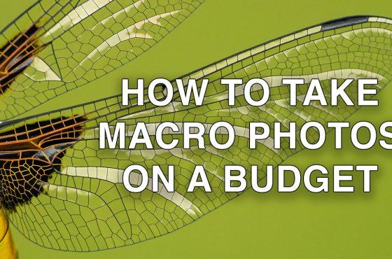 macro-photos-budget