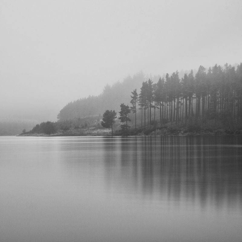 Trees reflected into a lake in a black and white landscape