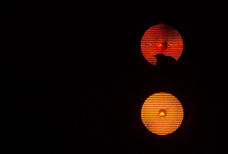 urban wildlife photo of a bird nesting in traffic lights at night