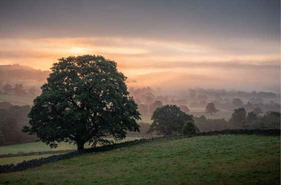 how-to-use-mist-to-improve-your-landscape-photos-9