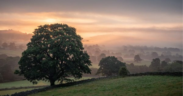 How to Use Mist to Improve Your Landscape Photos