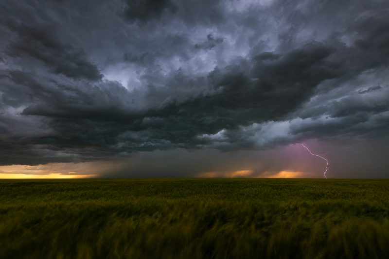 A bolt of lightning strikes in a field