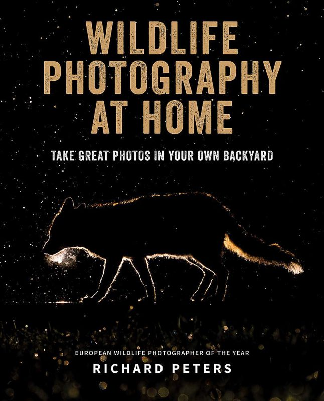 Top Ten Books For Nature Photographers this Christmas: Wildlife photography at home by Richard Peters