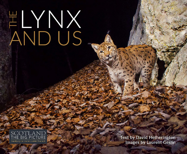 Top Ten Books For Nature Photographers this Christmas: The Lynx and Us by David Hetherington, images by Laurent Geslin