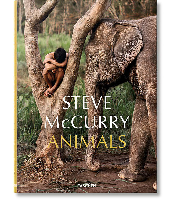 Top Ten Books For Nature Photographers this Christmas: Animals by Steve Mccurry