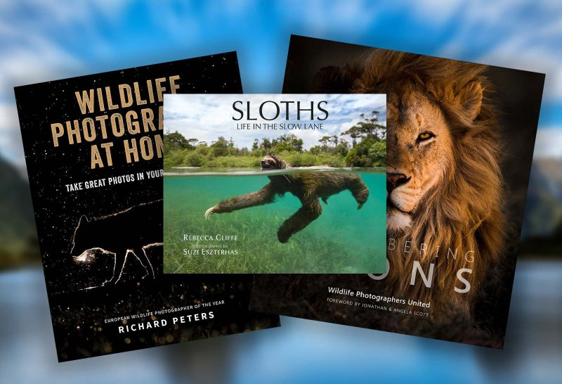 Top 10 Nature Photography Books for Photographers this Christmas