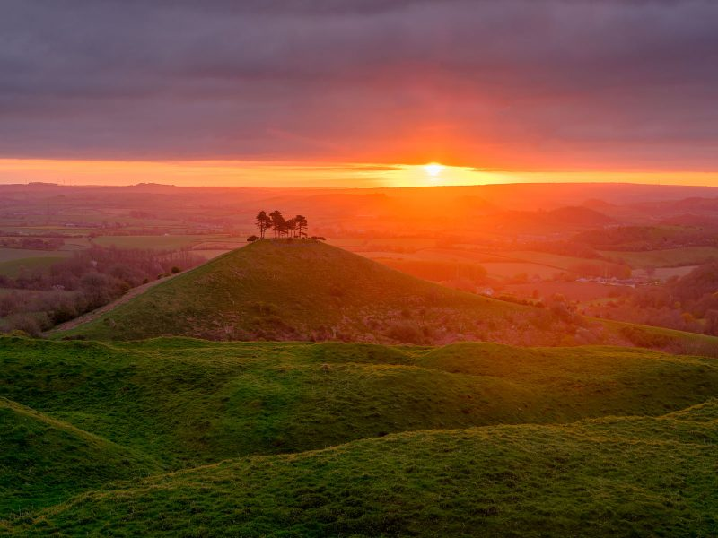Sunrise over Colmer's Hill