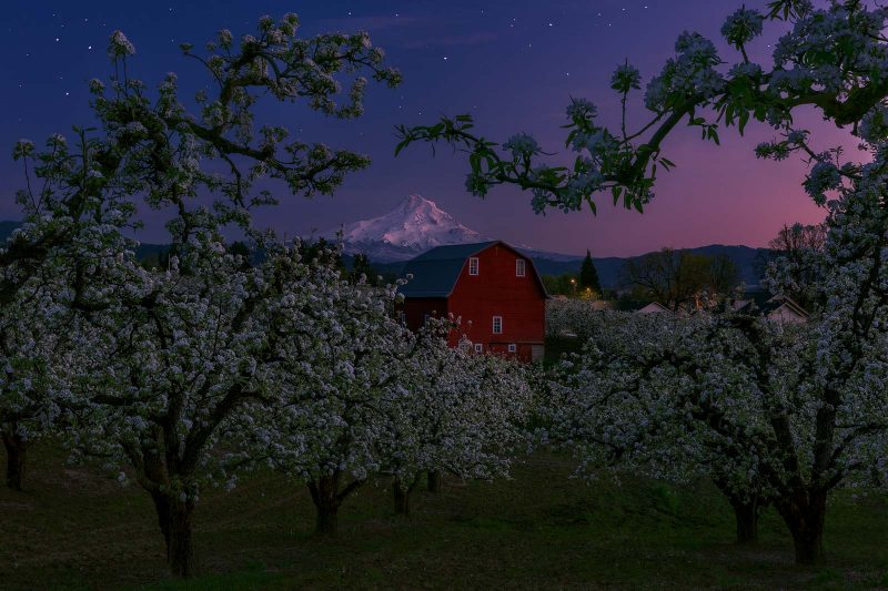 Star photography: Oregon barn and orchard under a night sky