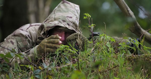 6 Tips for Better Fieldcraft in Wildlife Photography