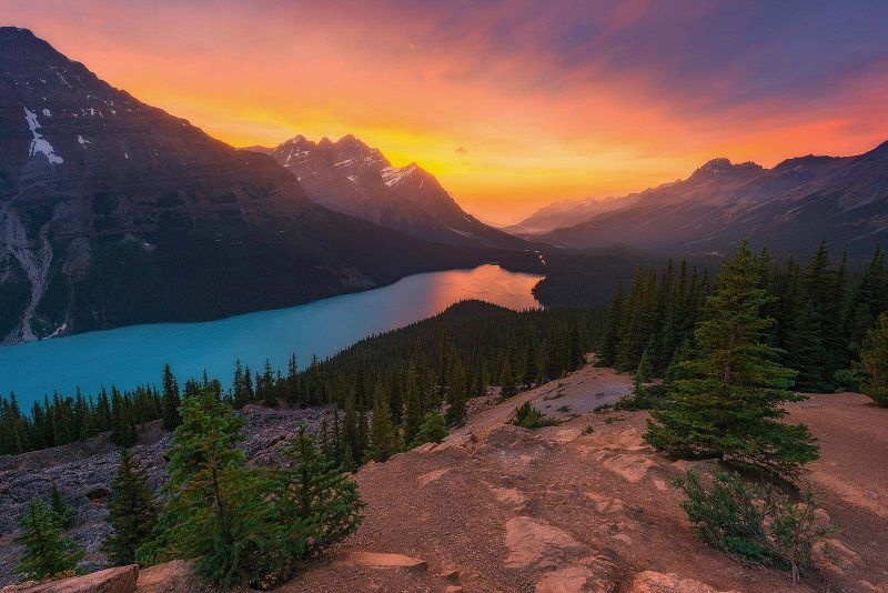 Peyto Lake, one of the best locations for landscape photography in Canada