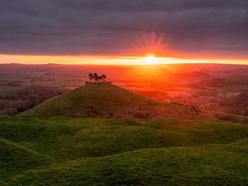 Colmer's Hill sunstar