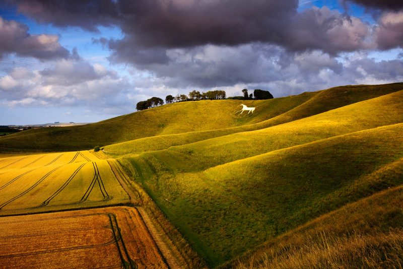Rolling countryside with golden sidelighting