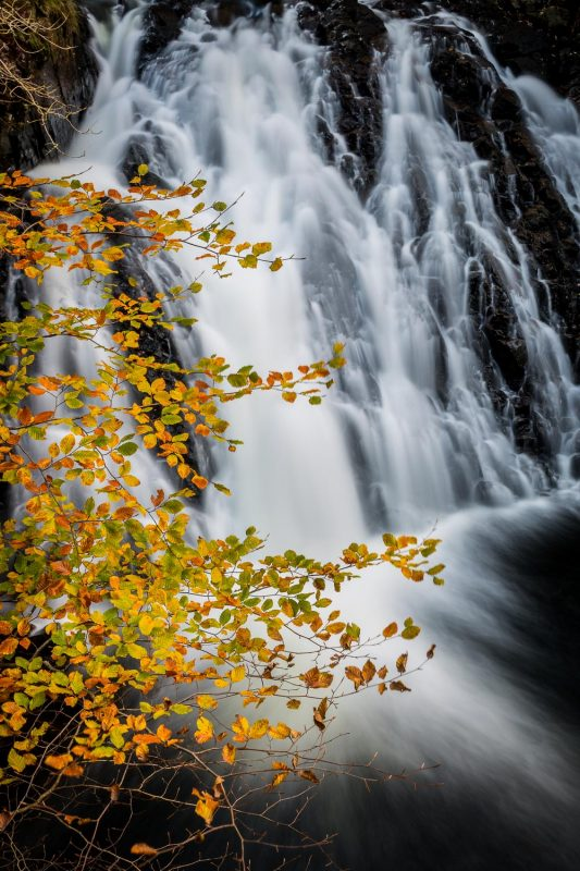 Waterfall and autumn leaves composition
